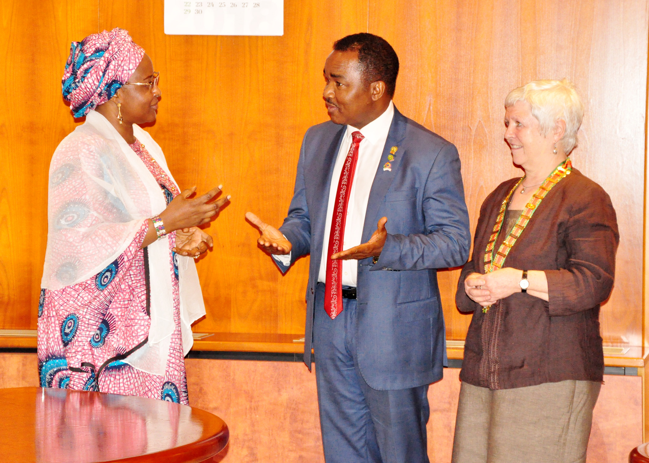 Mrs Buhari To Private Hospitals,Reduce Your Charges